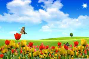 dreamscape_spring-wallpaper
